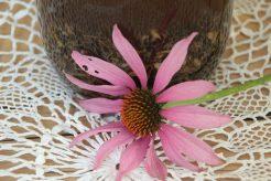 echinacea tinctuur zonnehoed