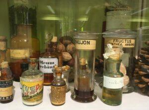 Fytotherapie versus homeopathie – verschillen en overeenkomsten